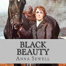 book tone on respect beauty by arrangement sewell