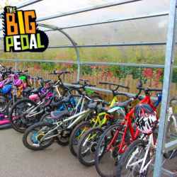 The Big Pedal