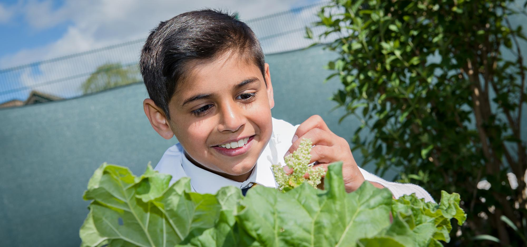 boy-gardening-leaves