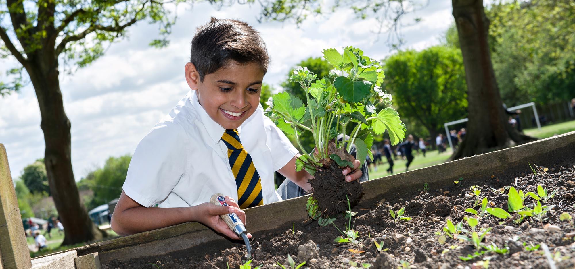 boy-planting-plant